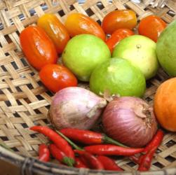 Секреты здорового питания: что следует знать для того, чтобы быстро похудеть